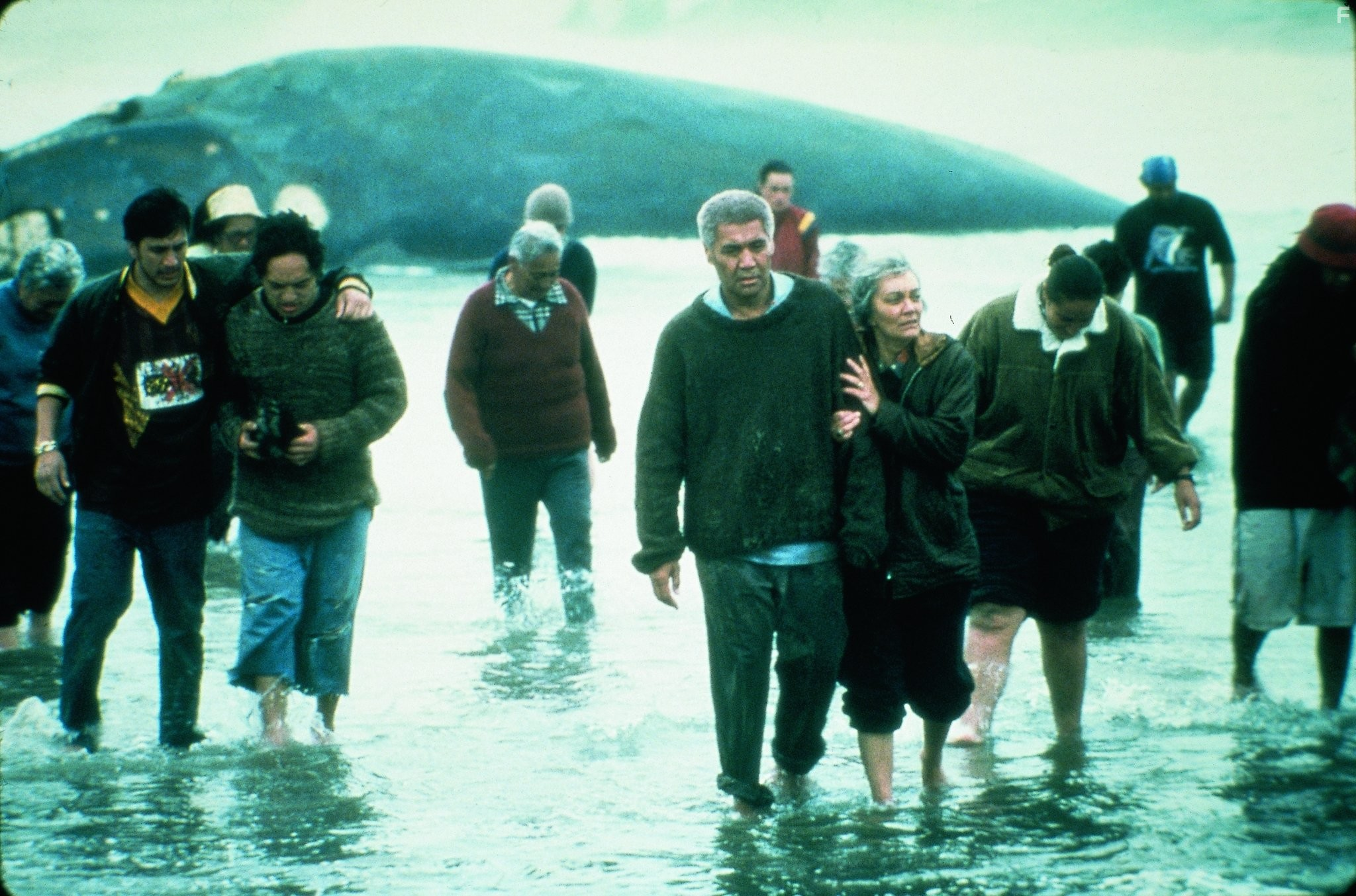 the whale rider essay The whale rider by witt alhambra has many important themes that are represented by several characters in the text such as koru farina, who struggles to put aside.